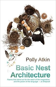 basic nest architecture poems seren