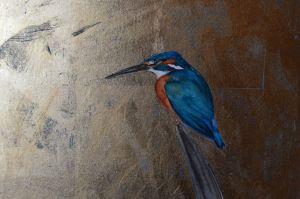 kingfisher jackie morris