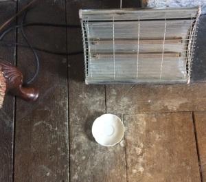 Chastleton saucer of milk cat
